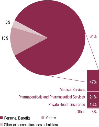 Figure 3 is a pie graph that provides a breakdown of administered expenditure. Administered expenses comprised primarily of payments for personal benefits (84% of the total), including those for medical services, pharmaceutical services and private health insurance rebates. Grants expenditure was 13 per cent of the total, with 3% attributed to other expenses including subsidies.