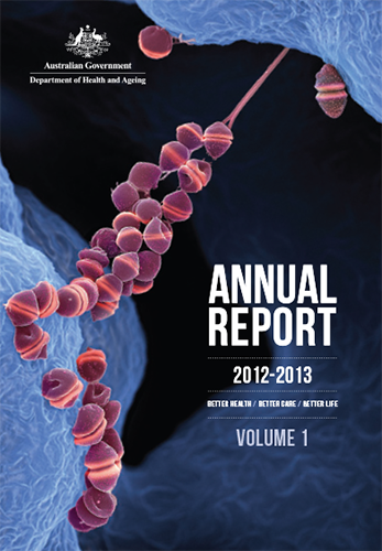 The image are of the covers of the 2012-13 Annual Reports.