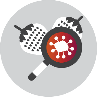 This icon depicts a magnifying glass, with a germ cell in the lens, examining two strawberries.