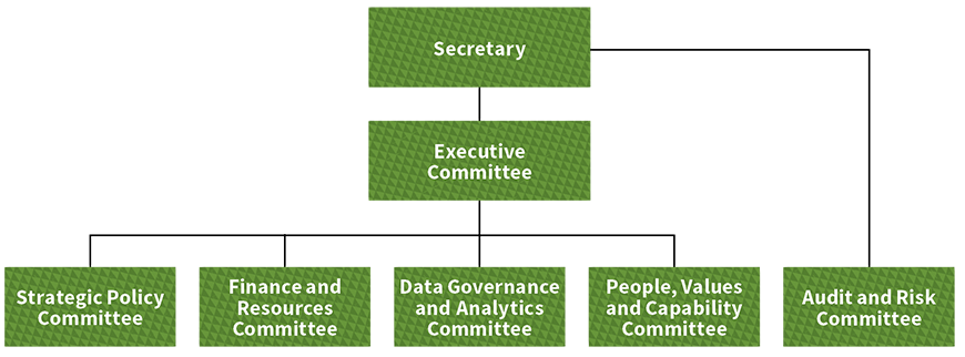 This figure is a hierarchy structure chart showing the Governance Committee structure within the Department. The Secretary oversees all committees, with the Executive Committee and the Audit and Risk Committee reporting directly. The Executive Committee directly oversees the Strategic Policy Committee, Finance and Resources Committee, Data Governance and Analytics Committee, and People, Values and Capability Committee.